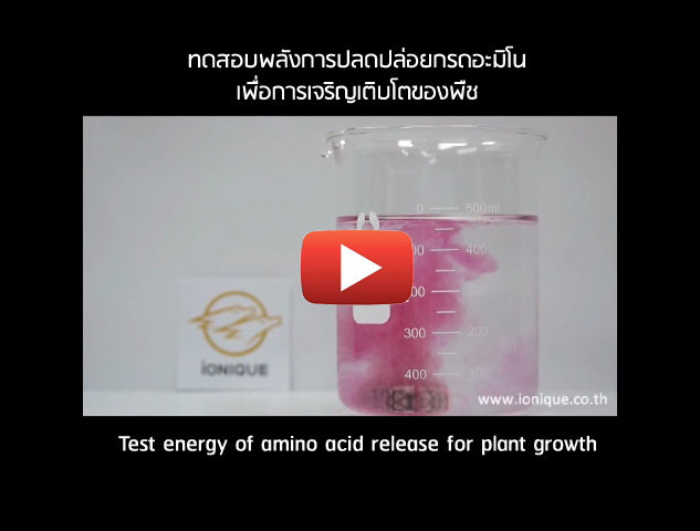 Test Energy of Amino Acid Release for Plant Growth